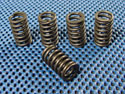 Kawasaki ZN700A Clutch Spring Kit